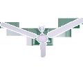 Ceiling Fan F-48